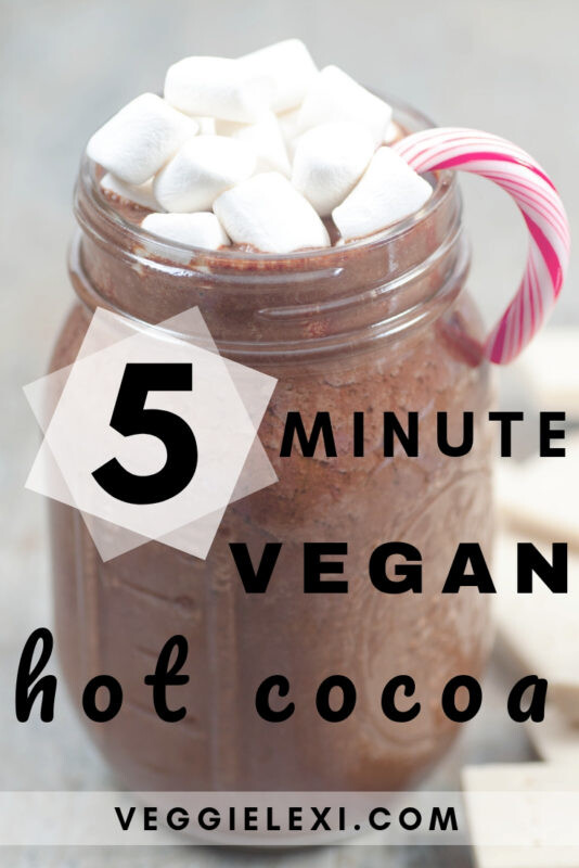 Delicious 5 Minute Vegan Dairy Free Hot Chocolate - by Veggie Lexi